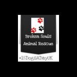 Broken Souls Rescue